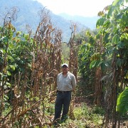 A farmer with his harvested crop