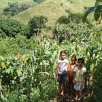 Local children with the maize crop