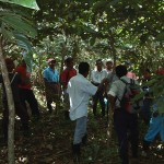 Local farmers visiting an inga alley system