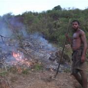 A farmer using slash and burn to prepare his land