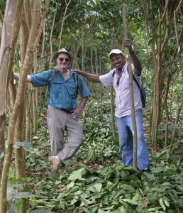 Inga Director, Mike Hands, and Field Director, Abraham, amongst the Inga alleys of our demonstration farm