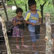 Toda la familia unida en su esfuerzo a sembrar Guama y ganar seguridad alimentaria