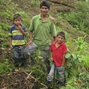 Don Maximino y familia en sus callejones de Guama  recién sembrado.