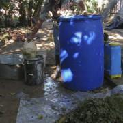 Filtering neem/garlic extract